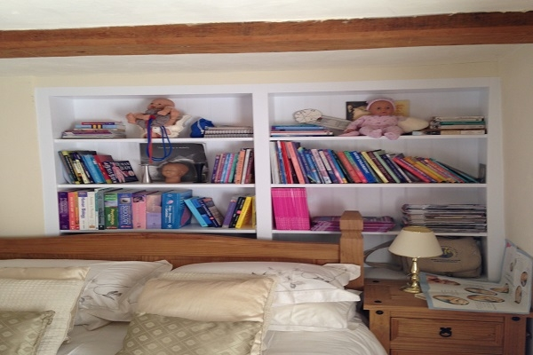 Petersfield Carpenters - Bookcases 5