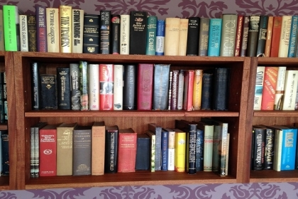 Petersfield Carpenters - Bookcases 7