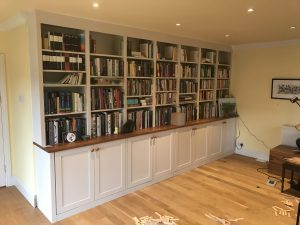 Bookshelves and Storage